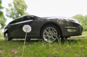 Ford Goes to the Weeds? | Our Auto Expert