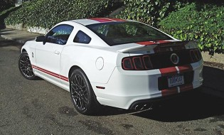 Shelbly Mustang