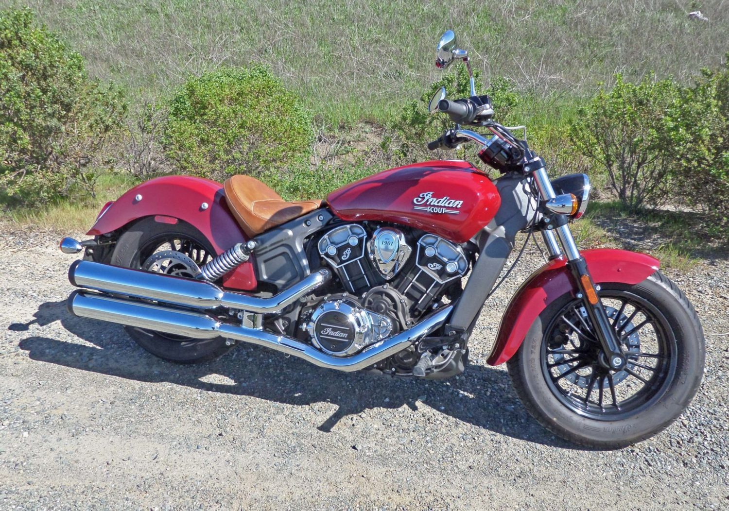 Indian Scout RSD