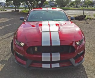 Ford-Mustang-GT350-Nose