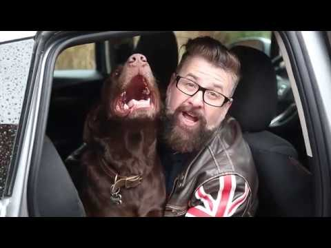 Best Cars for Dogsnbsp