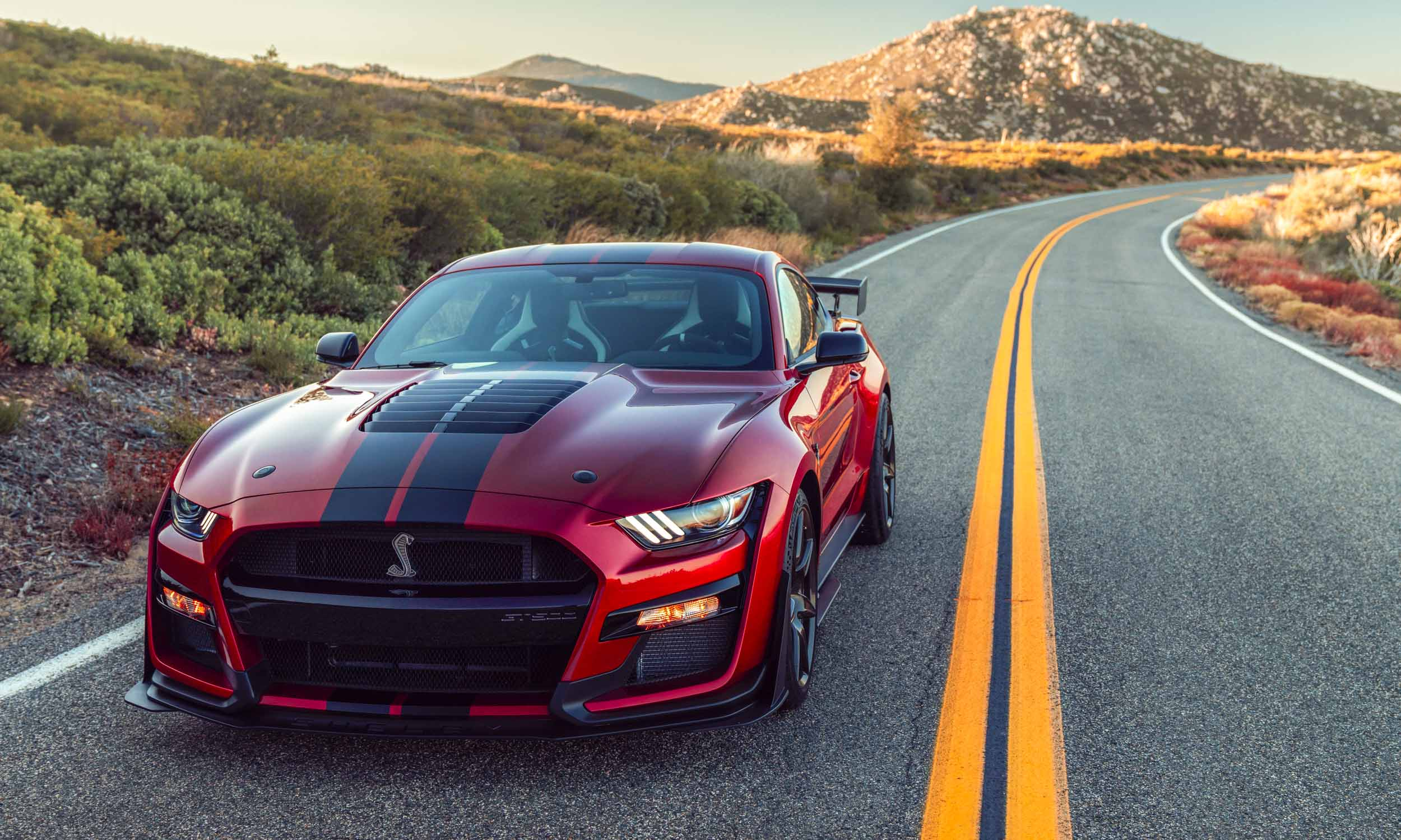 2019 Detroit Auto Show: 2020 Ford Shelby GT500 | Our Auto ...