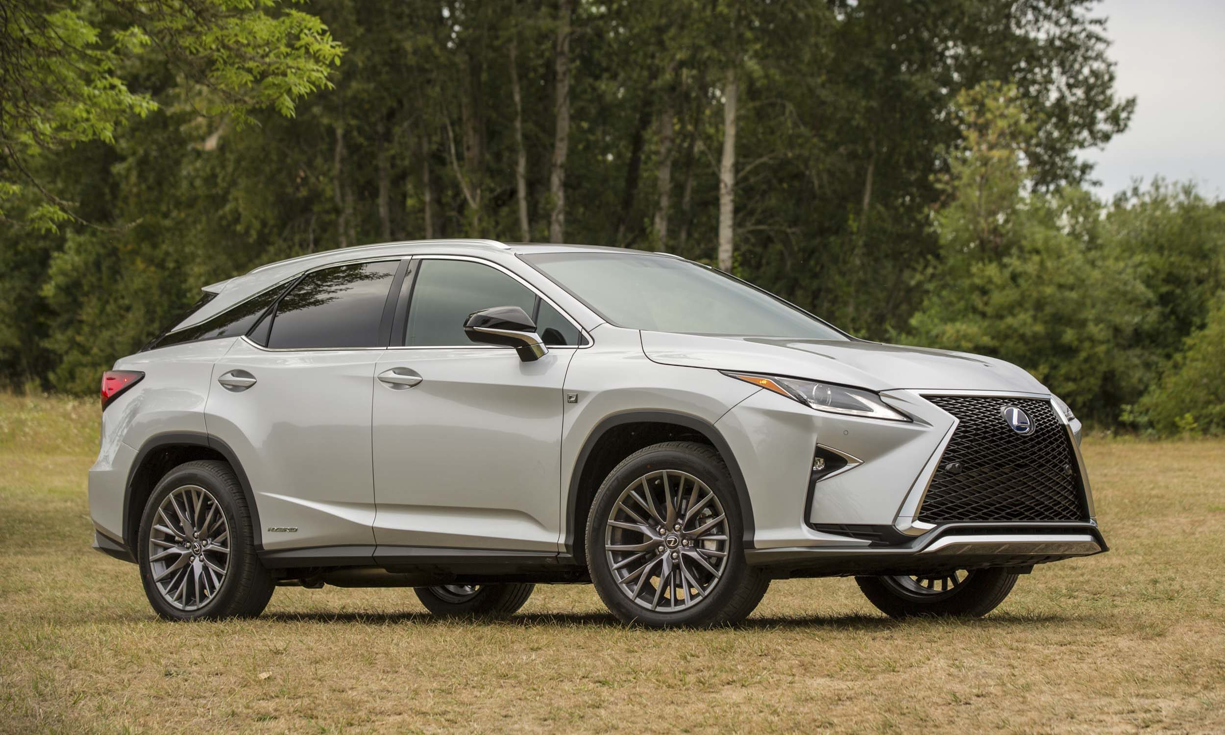 2018-Lexus-RX-450h5.jpg